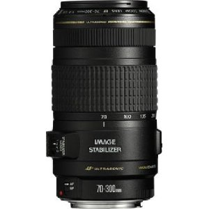 Canon EF 70-300mm f/4-5.6 IS USM Lenses